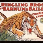 Things You Should Know About: Circus Disasters