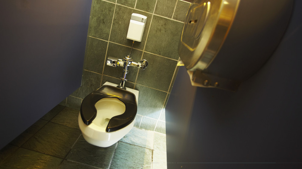 Automatic Toilet