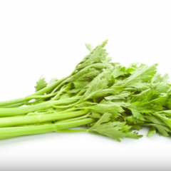 "Please Don't Ask Us Why We Had to Make This Video of Celery Set to Ginuwine's ""Pony"""