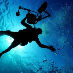 Professional Scuba Diver Drowning in Work