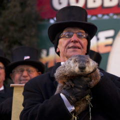 100 Words or Less: On Groundhog Day