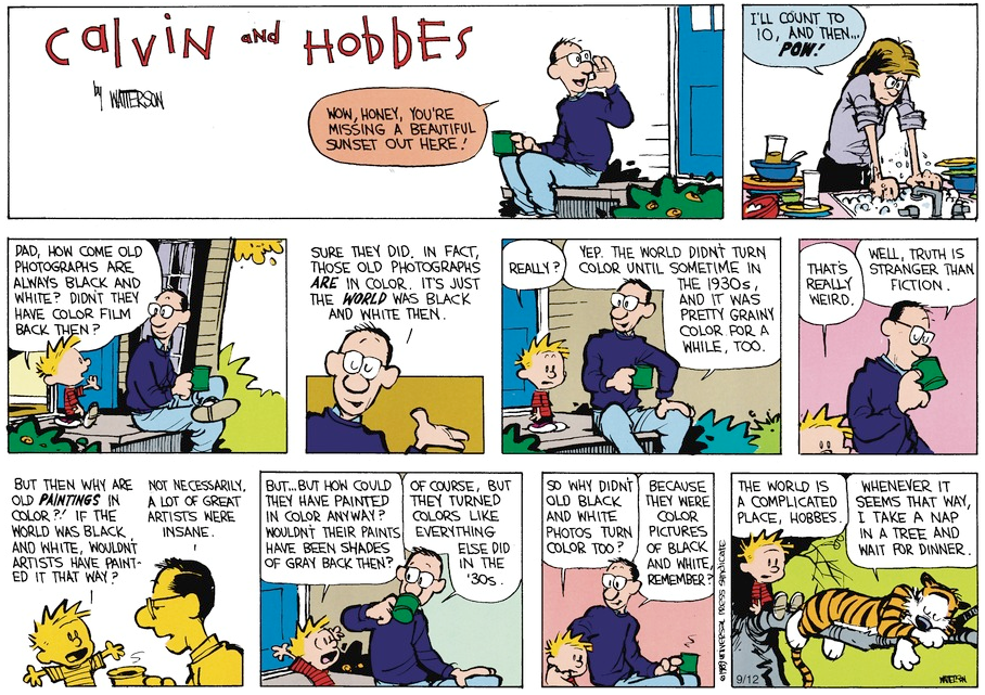 Calvin Hobbes Strip
