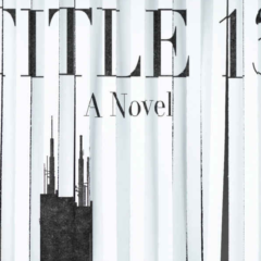 An Excerpt From Michael A. Ferro's 'TITLE 13'